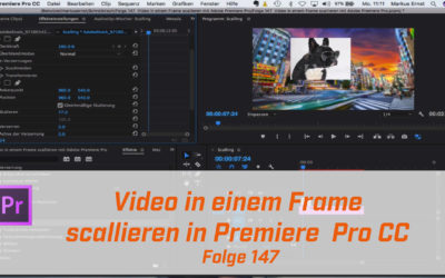 Video in einem Frame scallieren mit Adobe Premiere Pro