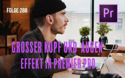 Grosser Kopf und Augen Effekt in Premiere Pro # Folge 288